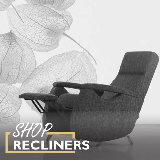 New Autumn Shop Recliners