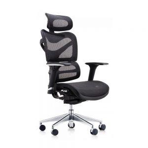 Dorsum-High-Back-Ergonomic-Mesh-Chair-with-Extra-Wide-Headrest