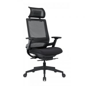 TENMC-Ergonomic-Mesh-Task-Chair-with-Sliding-Seat-and-Adjustable-Lumber-Support-and-Headrest